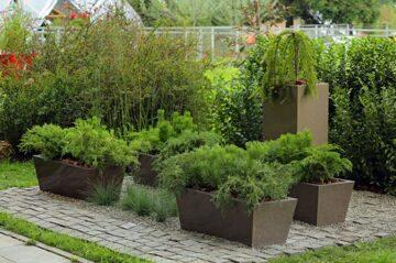 Сад    Но одиночество прекрасней