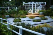 Сад Светланы Чижовой
